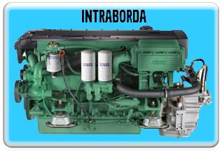 Intraborda
